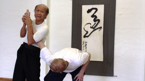 Sifu demonstriert einen Armhebel Taipeh 2012